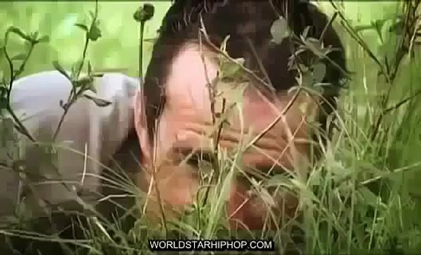 Discovery channel lion vs crocodile Discovery Wild animals attack