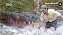 The Most dangerous killers - Awful attack of animals on people - Unique shots [natgeowild]