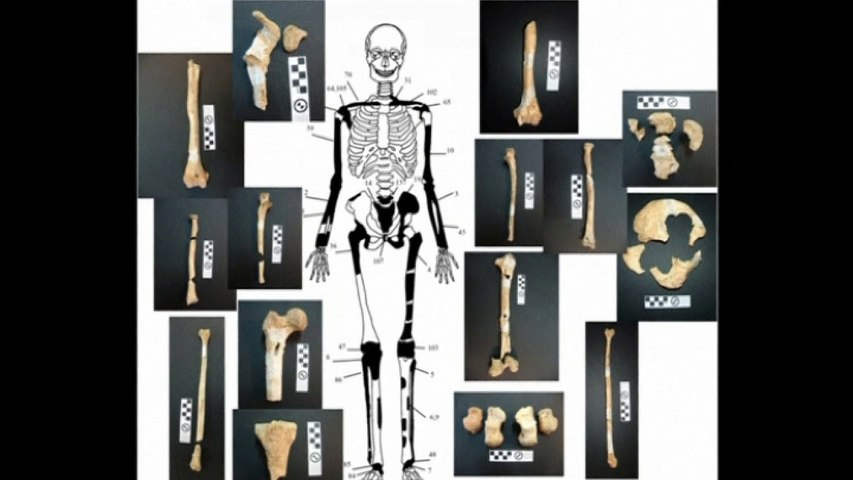Ancient skeletons found in Amphipolis archaeological tomb