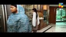 Tum Meray He Rehna Drama Episode 20 Part 3 HUM TV Jan 21, 2015