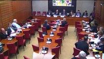 Audition de M. Raphaël Liogier, directeur de l'observatoire du religieux à l'institut d'études politiques d'Aix-en-Provence - Mercredi 21 Janvier 2015