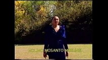 Annie Ngwe Mobejo - Molimo Mosantu Mosungi - Adoration, Gospel & Louange