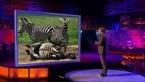 The Graham Norton Show - S11E07 -Cameron Diaz, David Attenborough, Kathy Burke and Scissor Sisters(1)