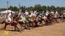 Maroc paysage 4 : Tbourida (Fantasia) * Sidi Yahya El Gharb *