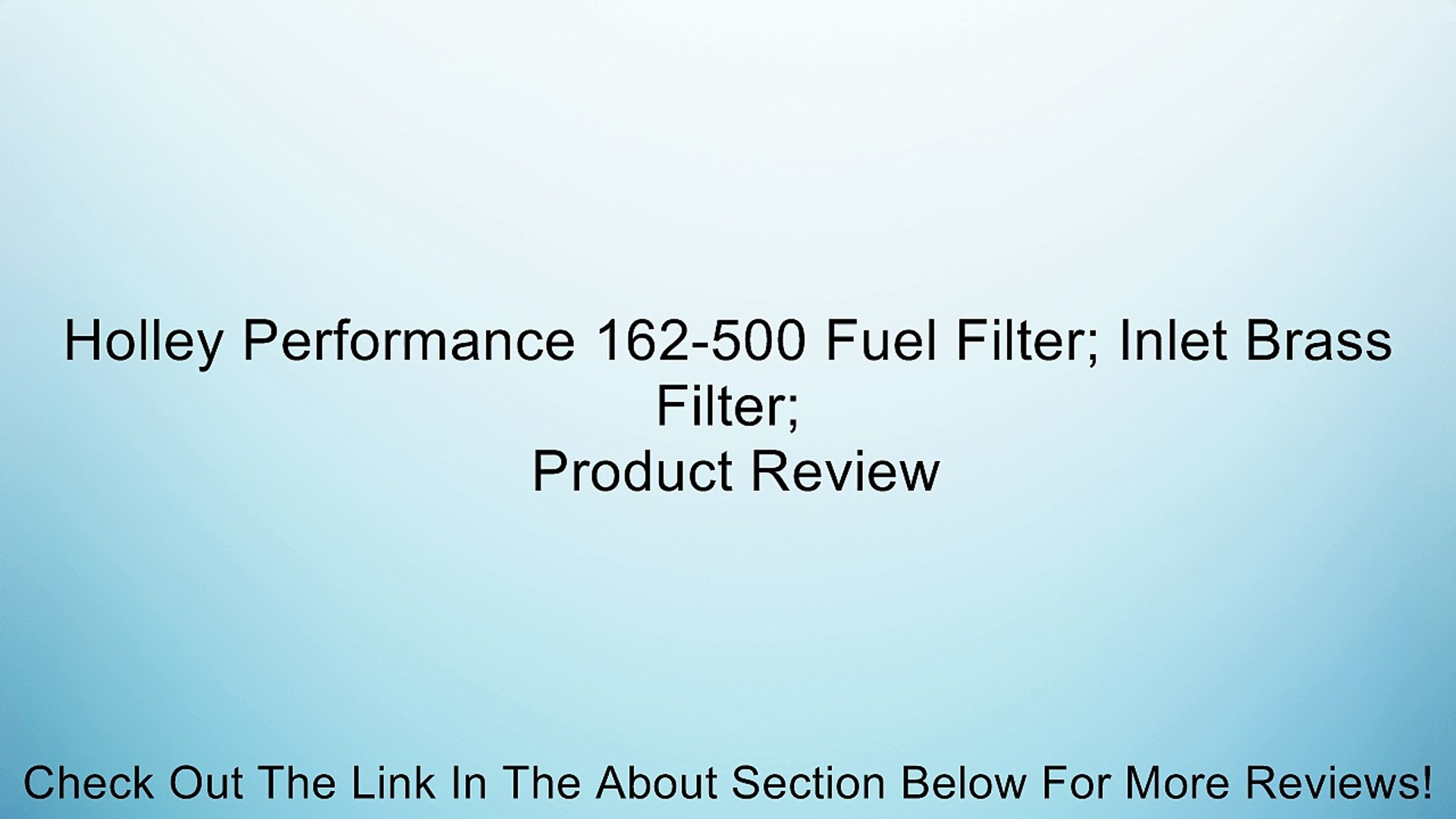 Holley 162-500 Fuel Filter