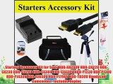 Starters Accessory Kit for Sony HDR-XR260V HDR-CX220 HDR-CX230 HDR-CX290 HDR-CX380 HDR-CX430V