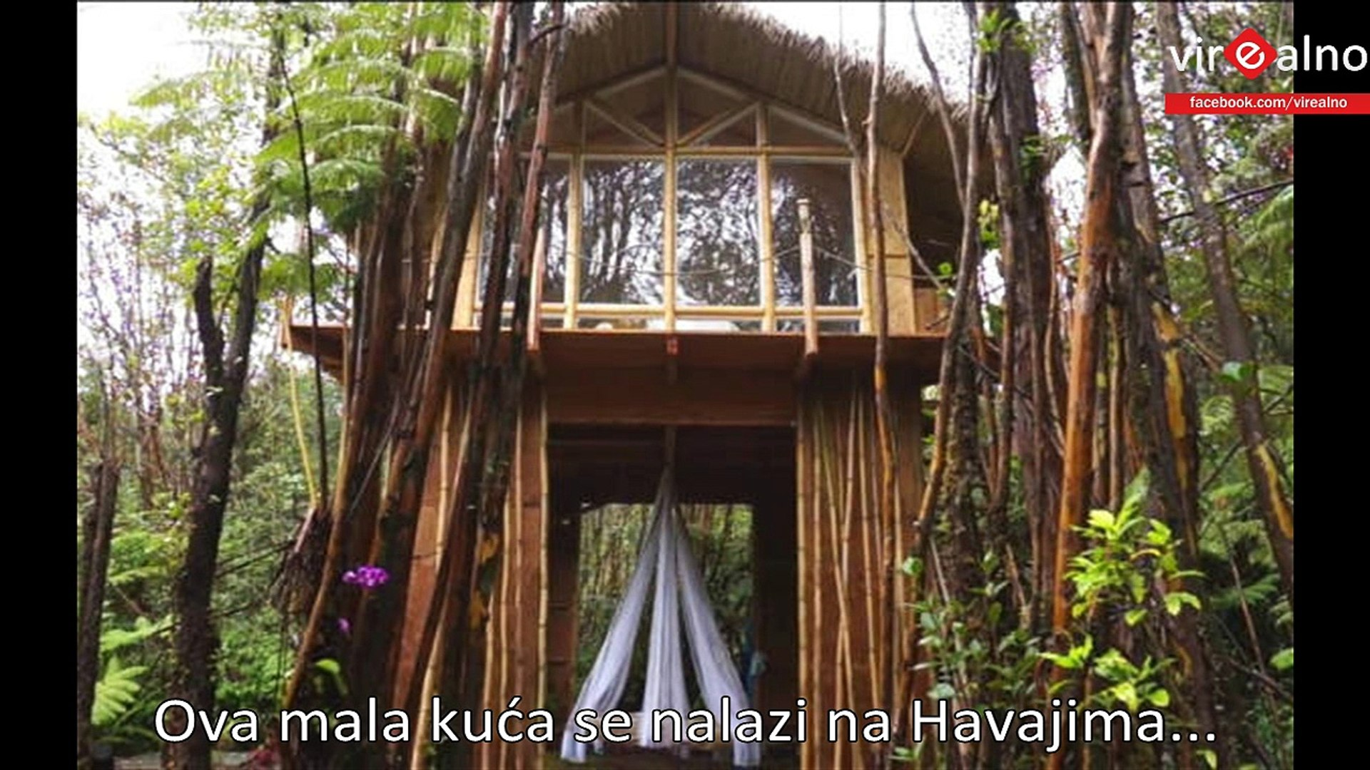 She Built A 230-Sq.-Ft. Tiny House In the Hawaiian Jungle For Just $11,000