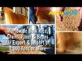 Purchase Bulk White Rice for Export, White Rice Exporting, White Rice Exporters, White Rice Exporter, White Rice Exports
