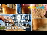 02iWholesale Bulk USA White Rice Broker, USA White Rice Export, Where to Buy Bulk USA White Rice, USA White Rice in Bulk, Buy