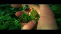 Bande-annonce : Epic : La Bataille du Royaume Secret - (3) VF
