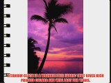 Printed Photography Beach Sunset Background Titanium Cloth TC388 Backdrop 5'x6' Ft (60x80)