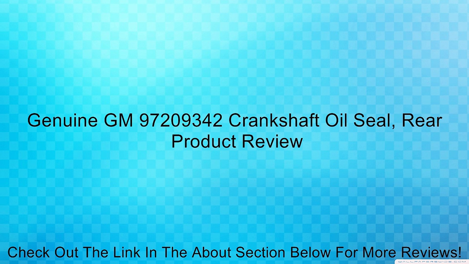 Genuine GM 89024128 Door Molding Center Rear