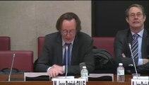 Rapport intermittence/ audition commission des affaires culturelles 1