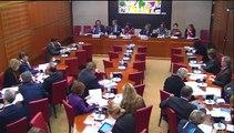 Rapport intermittence/ audition commission des affaires culturelles 2