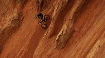 Vitesse et sensations fortes en downhill avec James Doerfling
