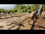 Adrénaline Shots : passage de l'obstacle de The Mud Day Paris du 11 mai 2014 de 17h30 à 17h44
