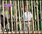 Thai Drama 2015,Malevolent wife Ep 08B,ភរិយាចិត្តព្រៃផ្សៃ EP 08B   Pheak riyea Chit Prey Psay,Thai Drama 2015,Bad of wife,ugly wife