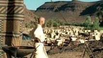La batalla de Meggido,  Historias de Egipcios