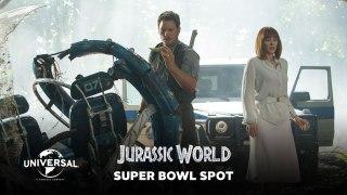 Spots TV Super Bowl XLIX (2015)