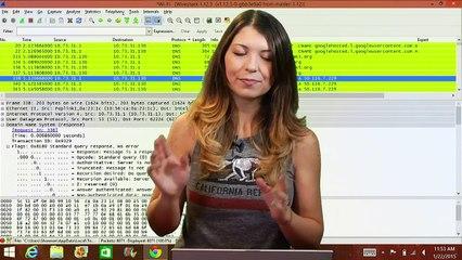 Wireshark 101: The Domain Name System - HakTip
