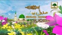 Madani Muzakra 852 - Laddoo Ki Barkat (Madani Bahaar) - Maulana Ilyas Qadri