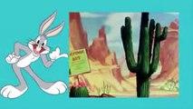 Katie bunny and Elmer Fudd