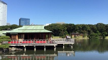 Tokyo Hamarikyu Gardens - Le jardin Hama-Rikyū