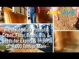Buy Bulk Peanuts for Import, Peanuts Importer, Peanuts Imports, Peanuts Importing, Peanuts Importers