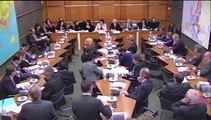 Audition de Mme Sylvia Pinel, ministre du logement, de l'égalité des territoires et de la ruralité, sur la politique d'aménagement du territoire - Mardi 3 Février 2015