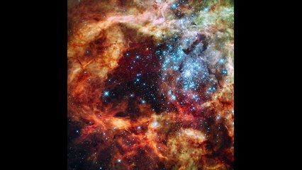 The Largest Galaxy in the Universe - IC 1101