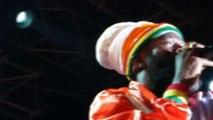 capleton jah jah city (live) garance reggae festival 2014