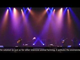 Japan: B Major Sessions
