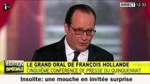 Une mouche gène François Hollande durant sa conférence de presse