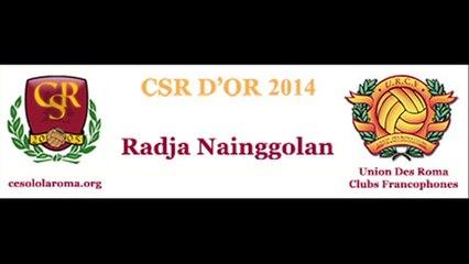 Prix CSR d'OR 2014 - Nainggolan