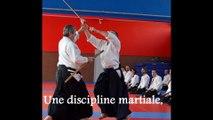 Stage d'Aïkido Traditionnel à Dole avec Alain Peyrache