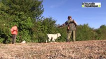 VIDEO. Joué-lès-Tours : La chasse est ouverte