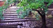 近江八幡 雨降る夕暮れ時 ♫琵琶湖哀歌 Lake Biwa. History of town,