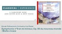 Antonin Dvorak : Symphonie n°9 en mi mineur, Op. 95 du nouveau monde : Molto vivace