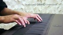 Le Seaboard, une interface musicale révolutionnaire