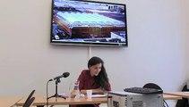 Commission innovation 2030 : audition Isabelle Delannoy (juillet 2013)