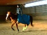 Casey au gallop avec moi!
