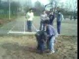 Ultimate backyard wrestling