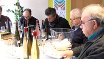 Dégustation INAO des Vins AOC Moselle