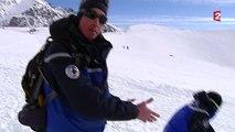 Rencontre avec les chiens d'avalanches des Alpes
