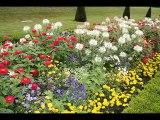 le jardin qui n'existe pas ... de Bernard BRESSON
