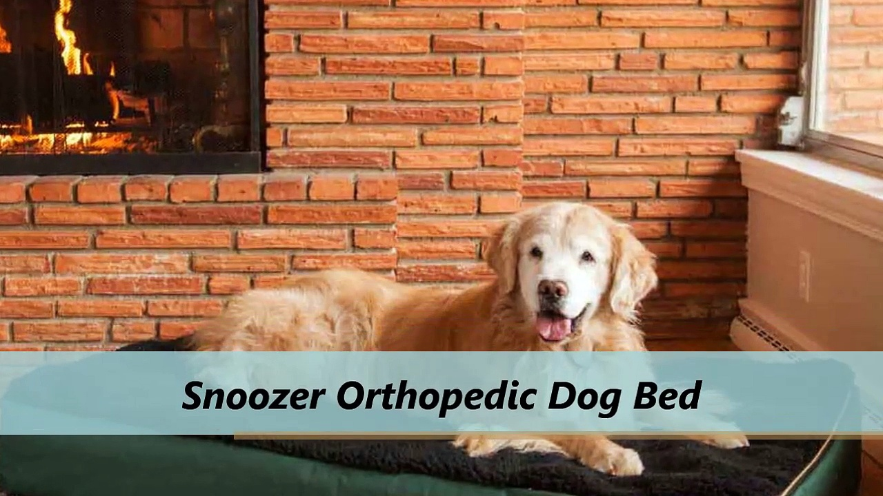 Snoozer Orthopedic Dog Beds