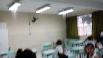 Água da chuva sai de luminárias na Escola Mariana Teixeira Cornélia em São José dos Campos