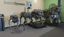 01Live Hebdo #45 : les robots tout-terrain font l'actu !