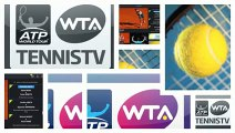 Watch - Ivo Karlovic vs Dustin Brown - Delray Beach Open 2015 - 2015 tennis live online - 2015 tennis live stream - tennis matches 2015