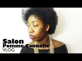 Mon expérience au Salon Pomme Cannelle I VLOG